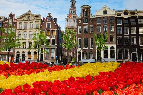 Rozliczenie Podatkowe Holandia